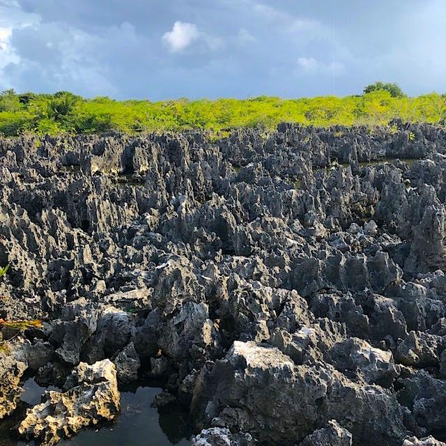 Hell Rocks