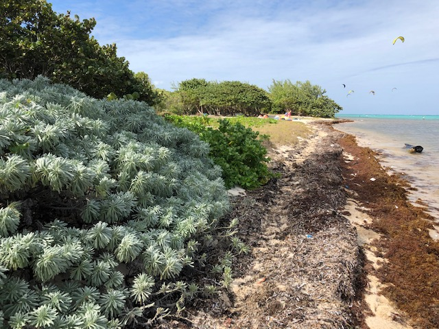 Barkers Beach
