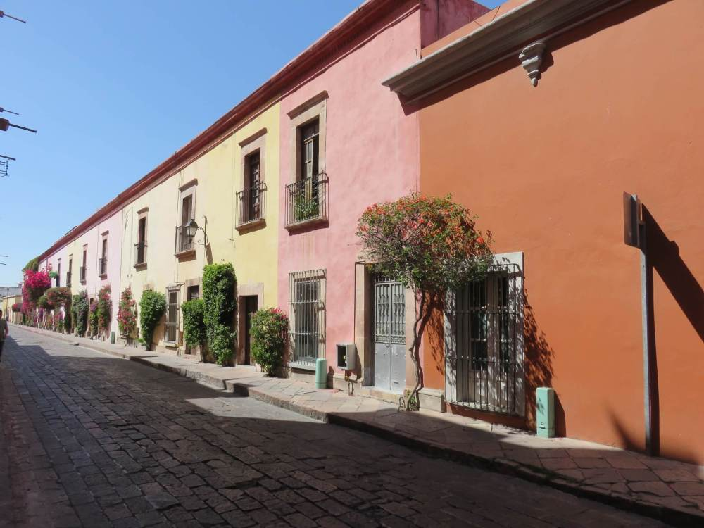 Side street with warm, colorful facades and flowering bushes in front contribute to the charm of the city's historical center