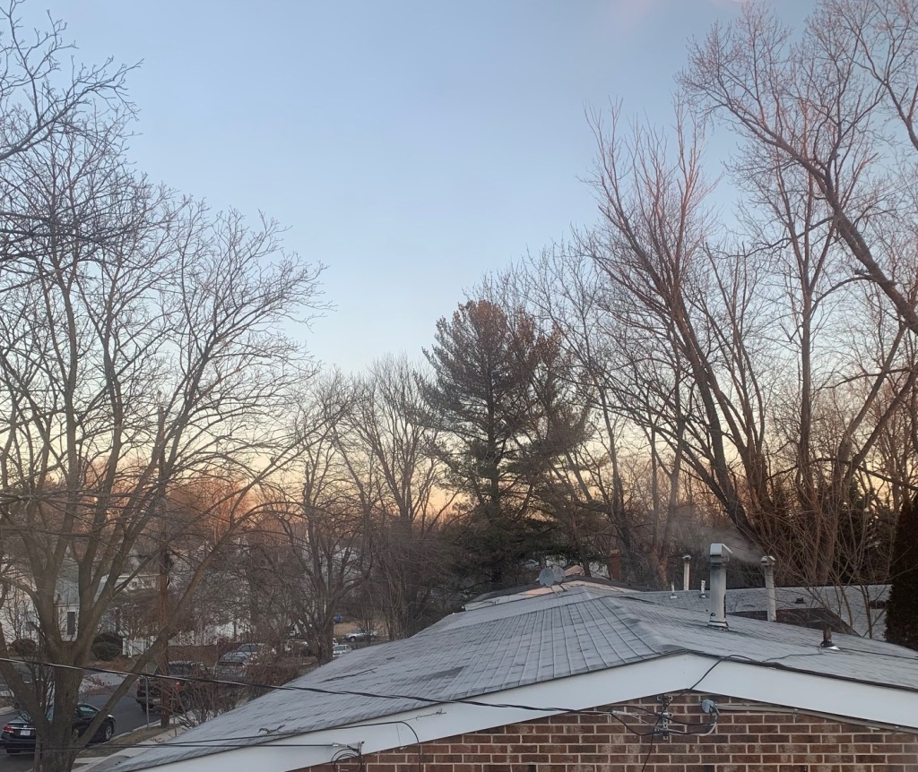 View of neighborhood (rooftops) just after dawn in Rockville from my home office.