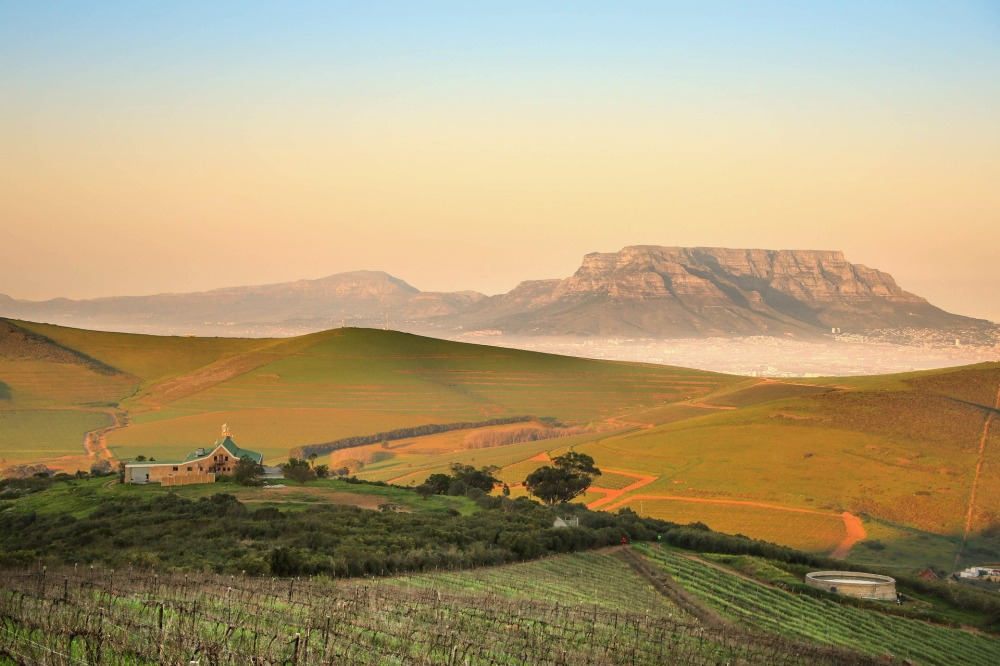 Table Mountain in the distance with South African countryside in the foreground