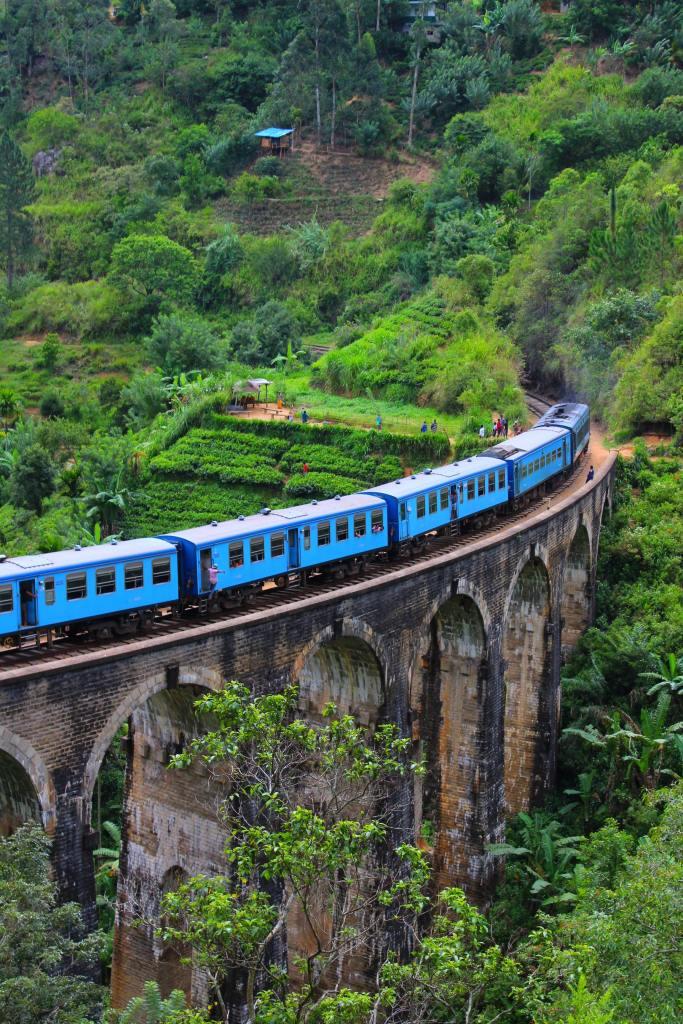 Blue train on arched bridge through lush green terraced land